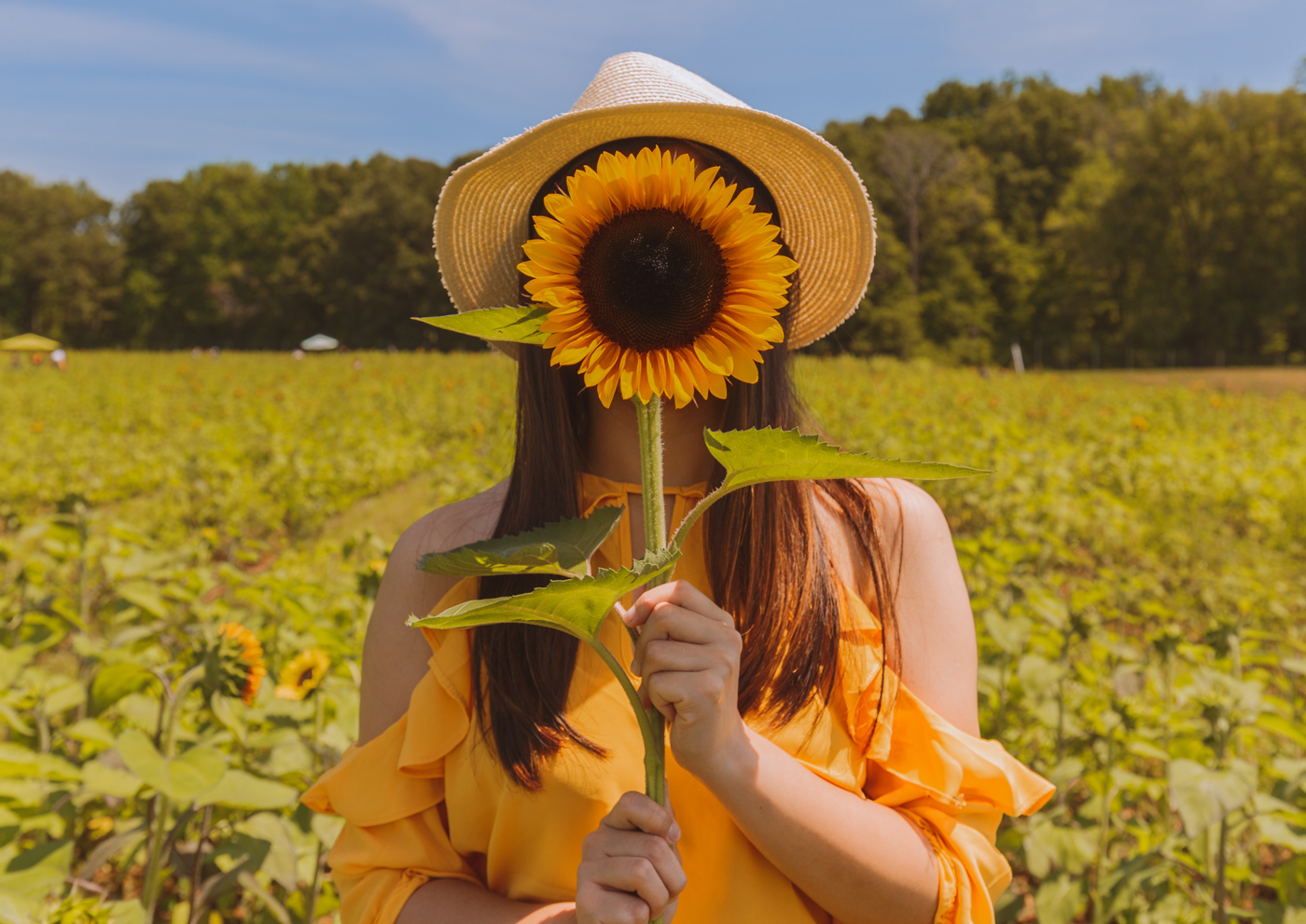 yourway_yourwhy_woman_yellow_sunflower